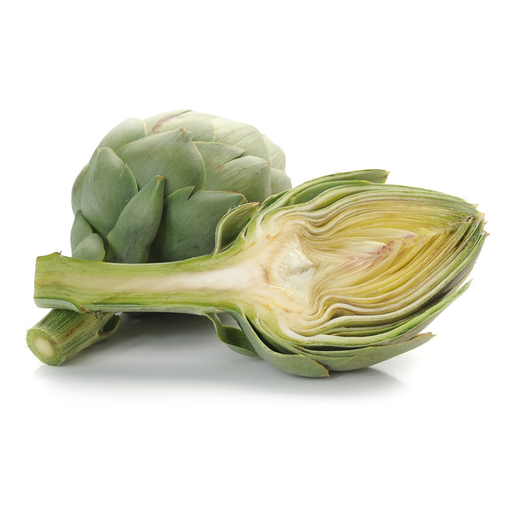 Madrigal Artichoke