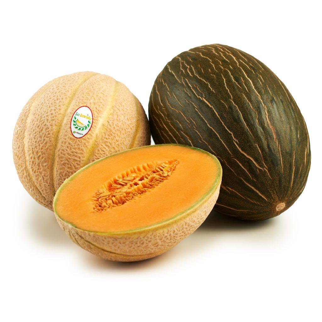 Saboridu Melone
