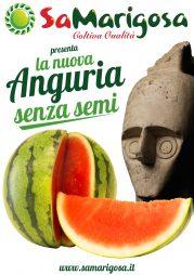 Sa Marigosa presenta la nuova Anguria senza Semi!